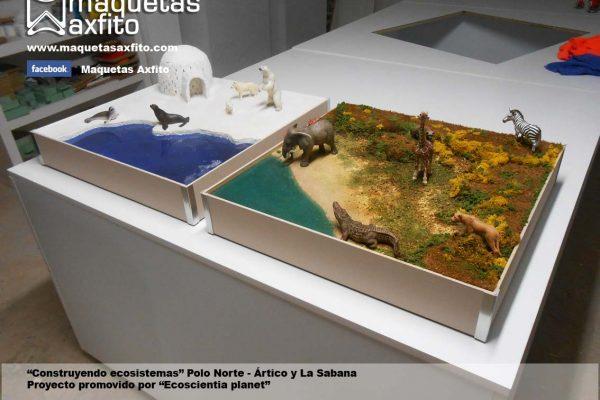 """Escenografías medioambientales """"Construyendo ecosistemas"""""""